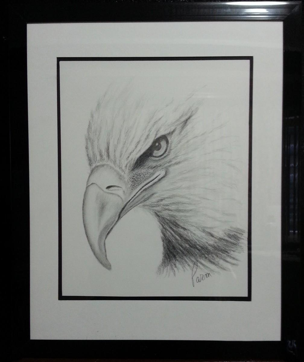 Eagle eye bald eagle pencil sketch color pencil on paper