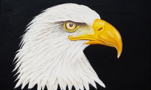Bald eagle oil painting at Parm